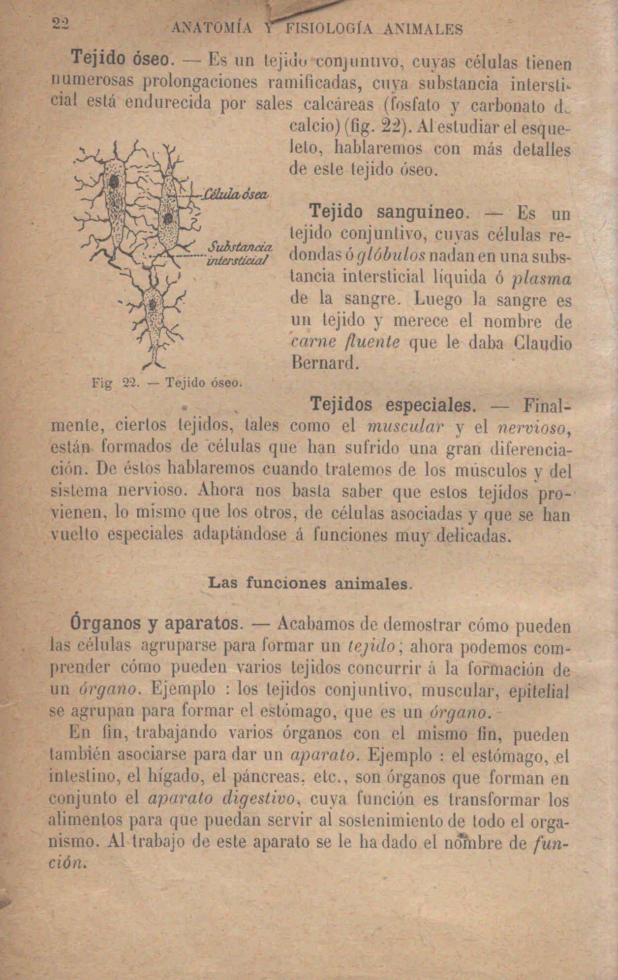 Index of /giga1/libros/00155717