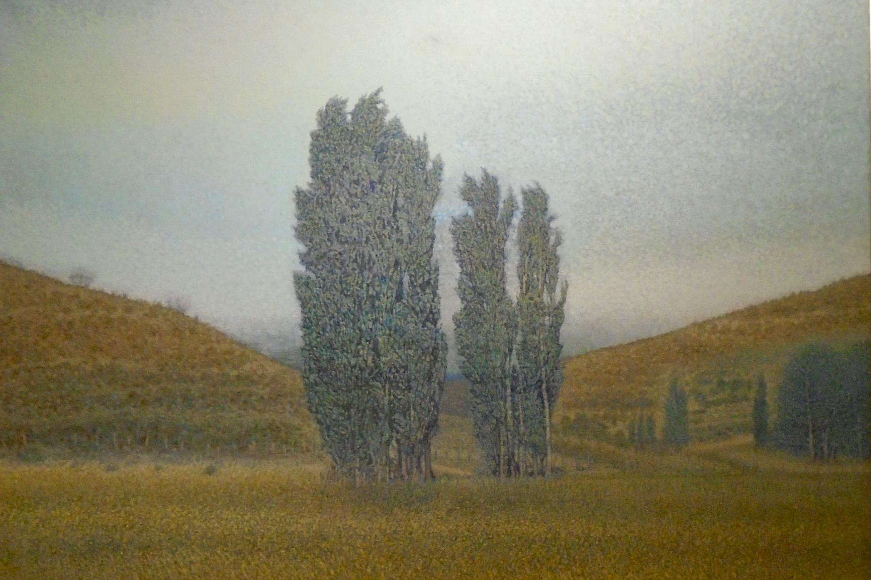 Álamos en la Bonita (Chubut), 2004